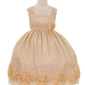 Mesh Champagne Flower Girl Dress with 3D Mesh Flowers