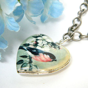 Handmade Necklace, Heart Shape Locket, Silver Chain, For Bird Lover, Adjustable Necklace, Colorful Bird Locket, Casual Necklace, Long Chain