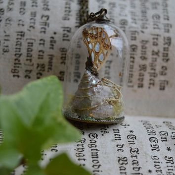 Silver Shores Butterfly & Shell Terrarium Necklace