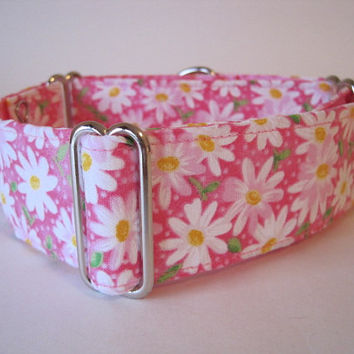Pink Martingale Collar, Pink, Daisy Martingale Collar, Floral, Greyhound Collar, Dog Collar, Daisies, Greyhound Martingale