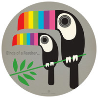 Anderson Design Group's Rainbow Toucans Circle Decal