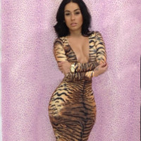 Brown Animal Print Long Sleeve Bodycon Dress