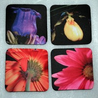 Flower Photo Coasters Set of Four 4 Square by Valiantstudios