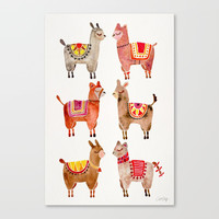 Alpacas Canvas Print by catcoq