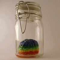 Oddities/Rainbow Brain in a Jar/Art/Home decor/Diversity/Autism/Science Lab/Zombie