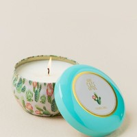 Agave Sage Tin Candle