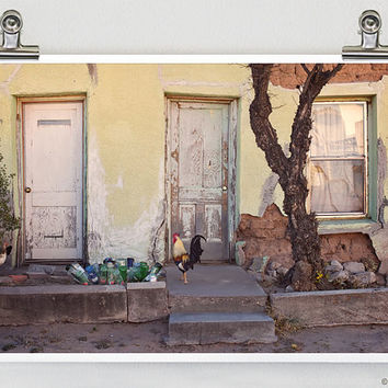 Dallas Street Rooster Marfa Texas Fine Art Photography 8 x 12