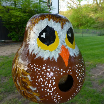 Hootie Owl Hand Painted Gourd Birdhouse Adorable Designs by Sugarbear Original Gourd Art Ready to Ship!