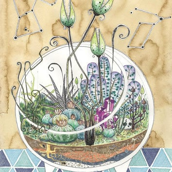 Crystal Skull Terrarium // Terrarium // Plants // Watercolor // Constellations // Succulents // Coffee stains