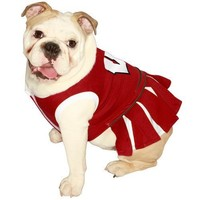 Pets First NCAA University of Wisconsin Badgers Cheerleader Dog Outfit, Medium