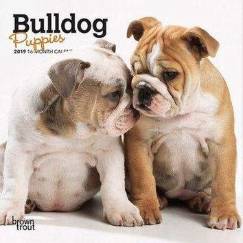 Bulldog Puppies Mini Wall Calendar, Bulldog by BrownTrout