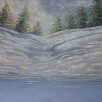 Snow Field Frozen Pond Muslin Photo Backdrop Hand Painted - MSS3097