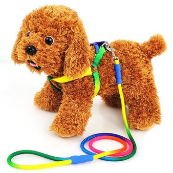 Hot Fashion 1Pc Rainbow Color Weave Nylon Belt Traction Rope  Training Leash