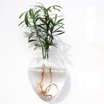 Clear Glass Hydroponic Wall Hanging Terrarium