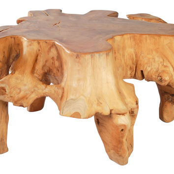 Prehistoric Coffee Table