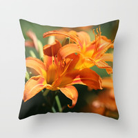 Day Lily Dance Throw Pillow by Theresa Campbell D'August Art