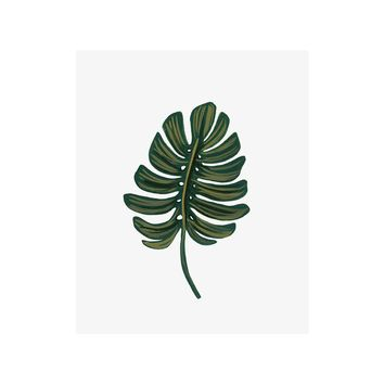 Monstera Leaf Art Print by RIFLE PAPER Co. | Made in USA