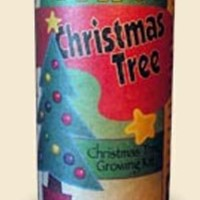 Giant Sequoia Christmas Tree Growing Kit - Grow Xmas Trees from Seed To Saplings - Kit Includes Seeds, Instructions, More. Great Gift Idea & Stocking Stuffer
