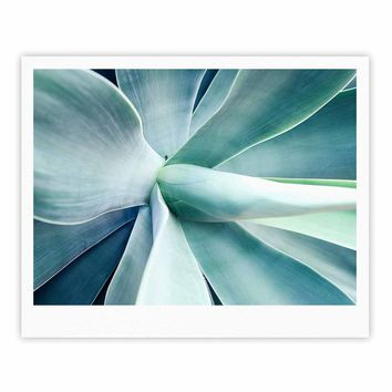 Succulant - Green Teal Nature Photography Fine Art Gallery Print