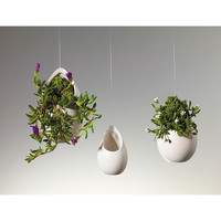 Hanging Around Planters - Set of 3