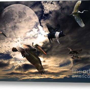 The Great Migration . Full Color Metal Print