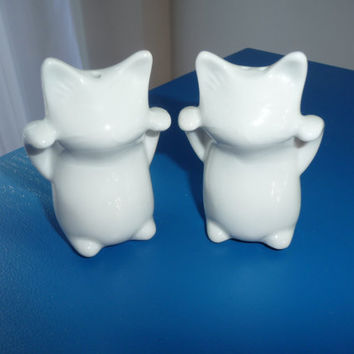 Salt & Pepper Cats