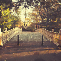 "Central Park in Autumn, NYC Bridge Photography, Fall Photography, Bridge Print, New York Sunrise Wall Art  ""Morning Glow"""