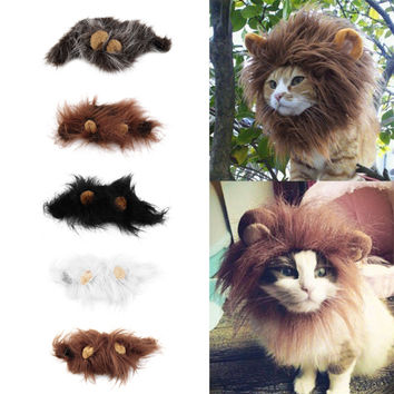 Catlion Costume for Cats