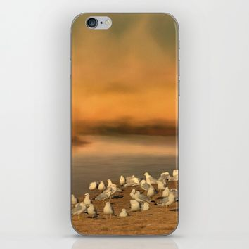 Seagulls On The Beach At Sunset iPhone & iPod Skin by Theresa Campbell D'August Art