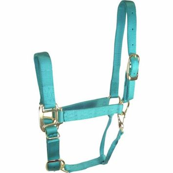 DuMOR® Premium Turquoise Halter for Medium Horse