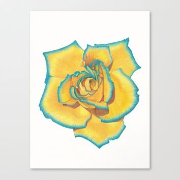 Yellow and Turquoise Rose Canvas Print by drawingsbylam