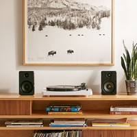 Michael O'Neal American Bison Art Print | Urban Outfitters