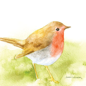 Robin Watercolor