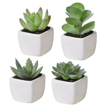 Set of 4 Mini Assorted Green Artificial Succulent Plants in Square White Ceramic Planters