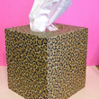 Hand-Painted Leopard Print Tissue Box