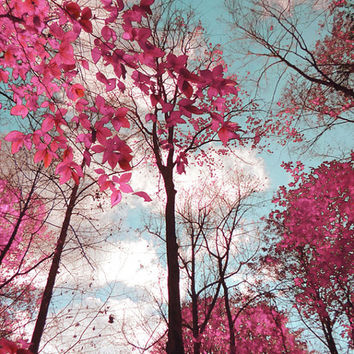 Dreamy Landscape Photograph, Pink and Blue Trees Picture, Surreal Nature Print, Fine Art Photo, sky, clouds, shabby chic, infrared, pastel