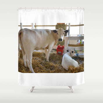 Cow and little calf Shower Curtain by Lanjee