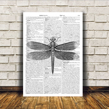 Dictionary print Dragonfly poster Insect art Modern decor RTA379
