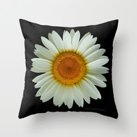 White Daisy on Black Throw Pillow by StrangeStore by Paul Stickland