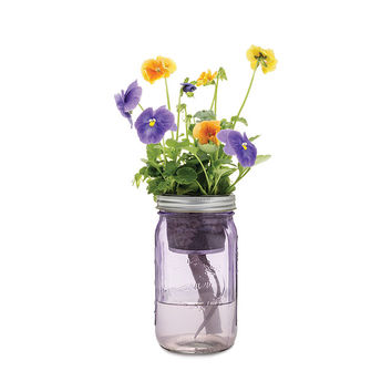 Mason Jar Indoor Flower Garden | window garden, hydroponics