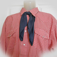Men's Vintage 70s Western Shirt in Red Gingham by Sheplers
