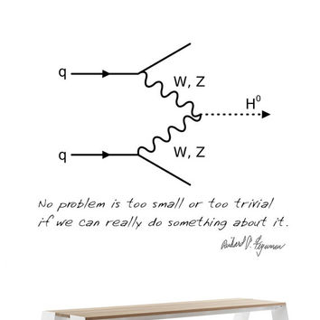 Science art physics - QED Feynman diagram and quote vinyl wall decal - science decal for classroom school univercity science decor
