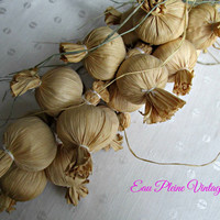 Raffia Straw Wall Ceiling Hanging Art Onions Vegetable Primitive Rustic Country Home Decor