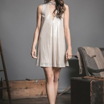 Champagne Dreams Shift Dress