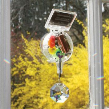 Solar Powered Rainbow Maker | Edmund Scientific
