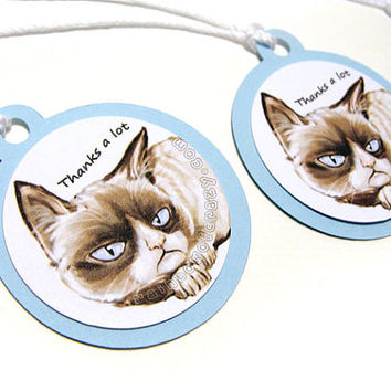 Grumpy Cat Thank You Tags, Set of 10, Blue and White Favor Tags, Baby Shower Tags, Funny Gift Tags, Hang Tags