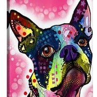 iCanvas 'Boston Terrier - Dean Russo' Giclee Print Canvas Art, Size 26x18 - Pink