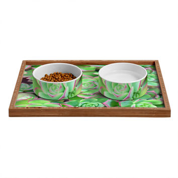 Lisa Argyropoulos Succulents Color Pet Bowl and Tray