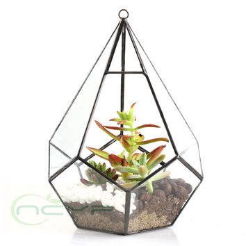 Modern Artistic Clear Glass Geometric Terrarium Five-surfaces Diamond Succulent Fern Moss Terrarium with Loop Hanging flowerpots