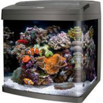 Aqueon Products - Glass - Coralife Bio Cube Led Aquarium